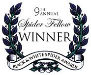 spiderfellow9thwinner